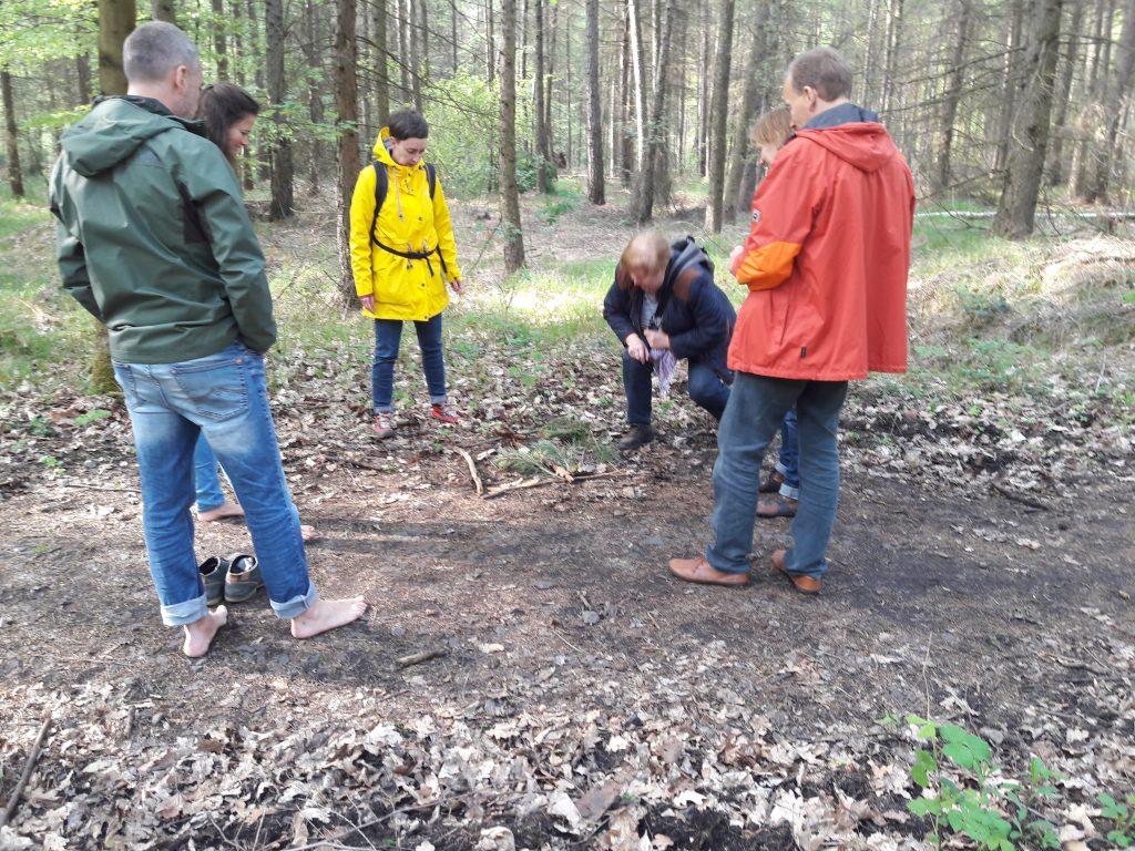 Waldbaden in Dresden. Die Teilnehmer legen gemeinsam ein Naturbild.