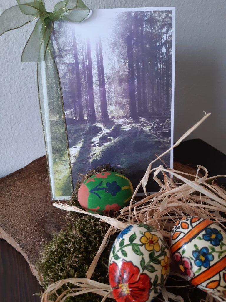 Geschenk für einen Waldbaden Kurs
